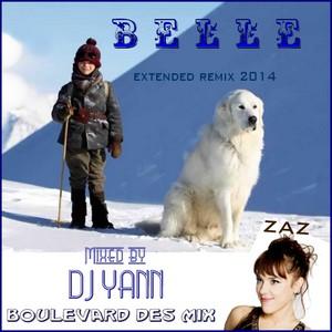 Belle_Remix2014